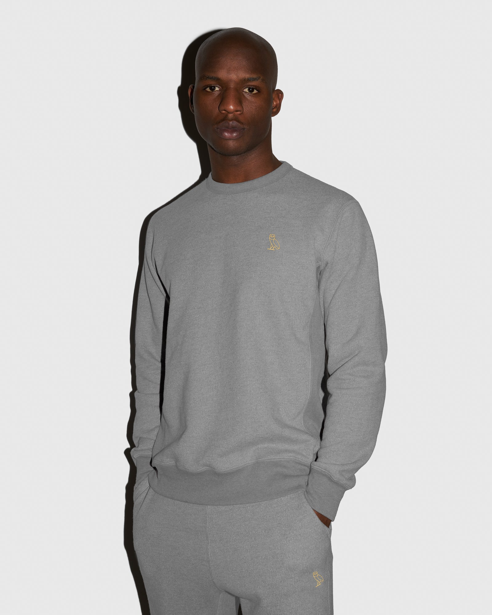 OVO FRENCH TERRY CREW - HEATHER ASH GREY IMAGE #2
