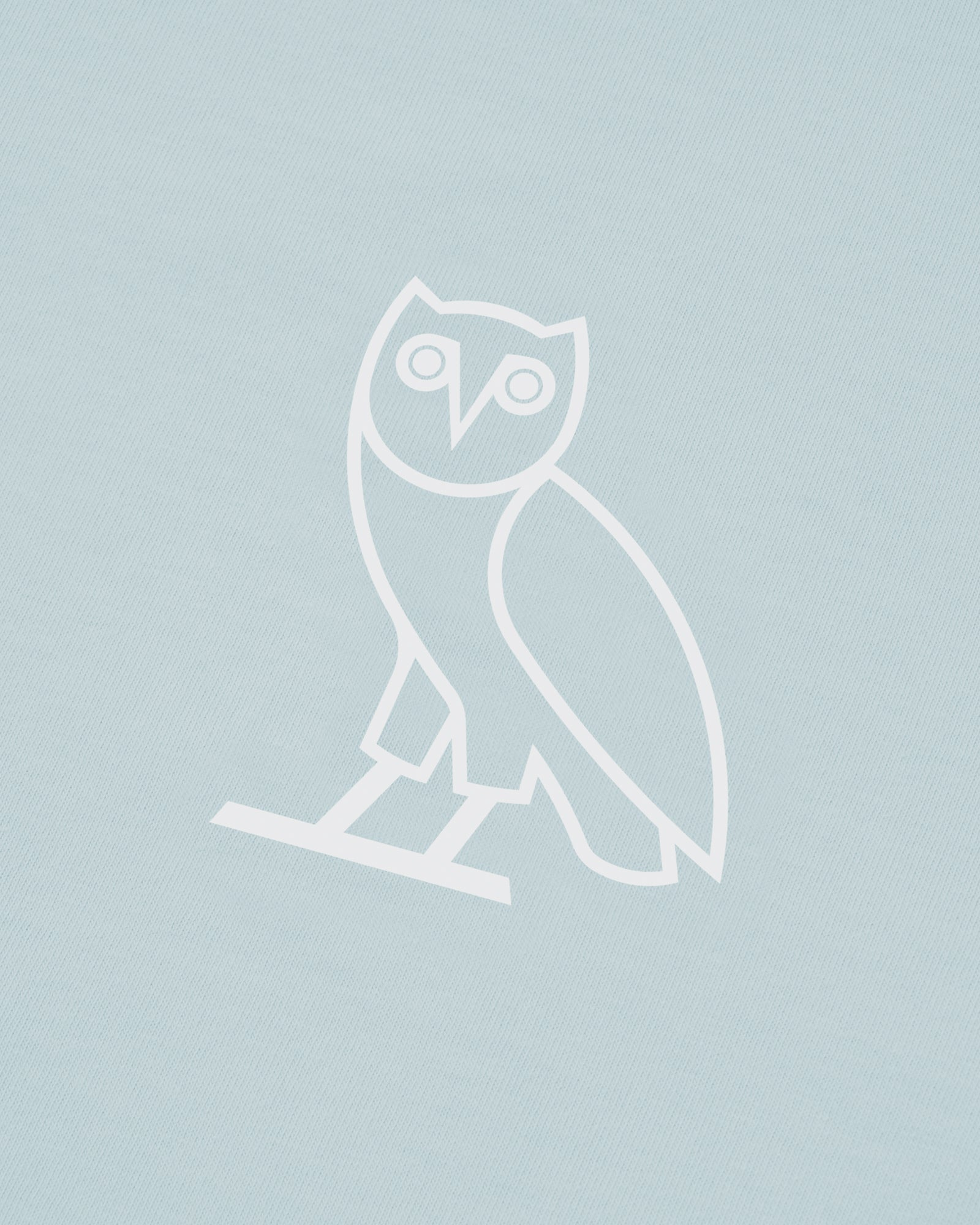 OVO SOME DAY T-SHIRT - BABY BLUE IMAGE #4