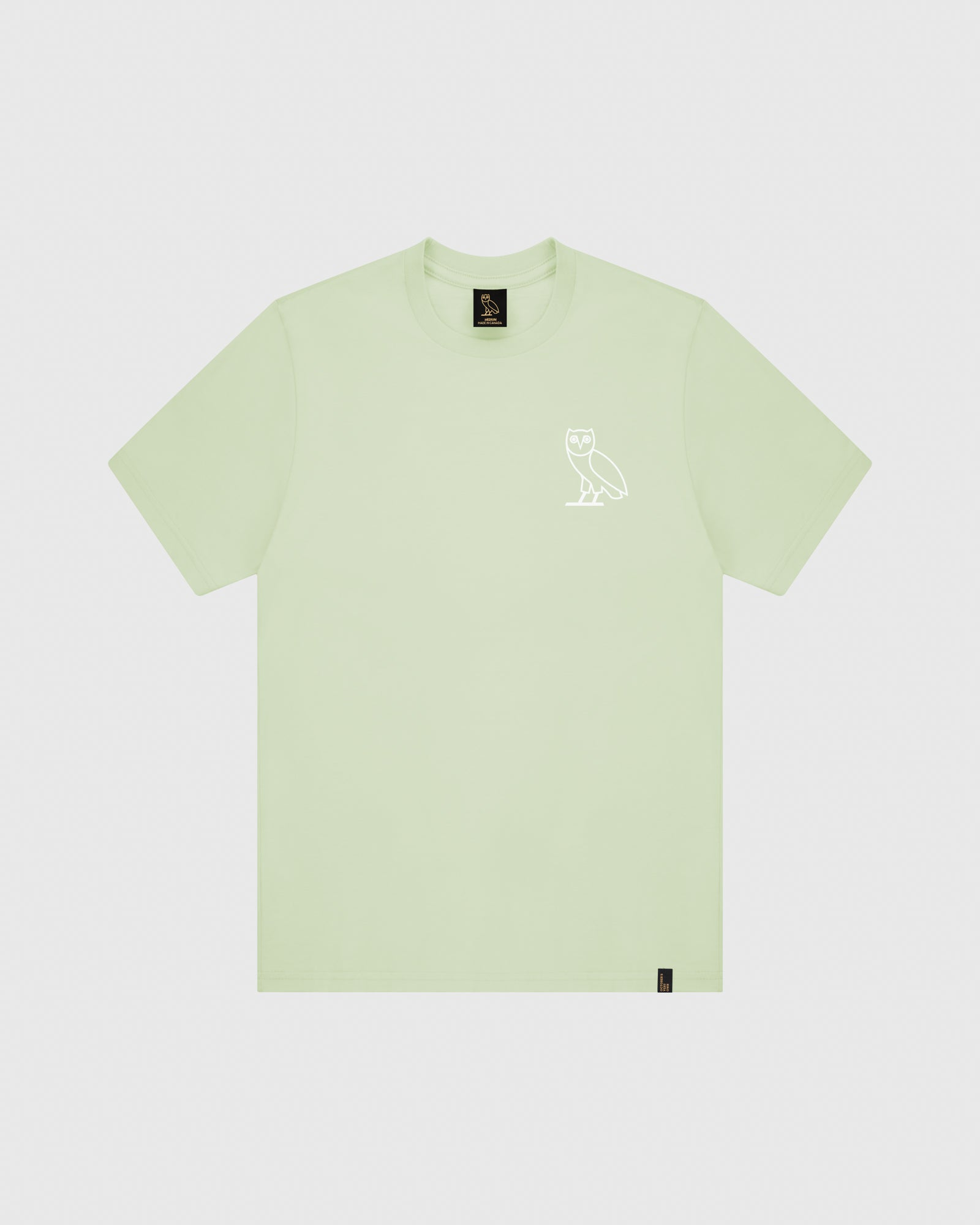 OVO SOME DAY T-SHIRT - MINT IMAGE #1