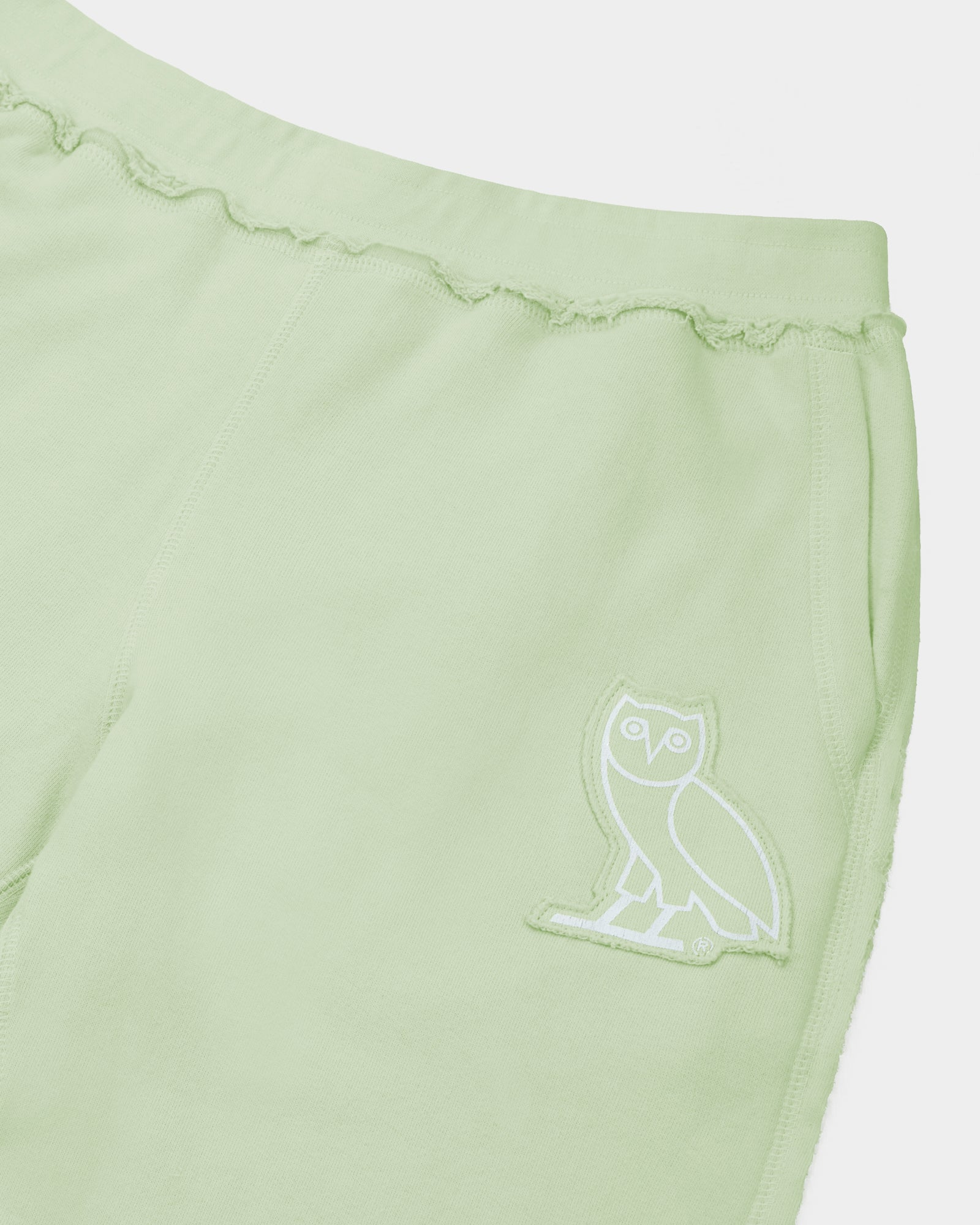 RAW EDGE FRENCH TERRY SWEATSHORT - MINT IMAGE #3