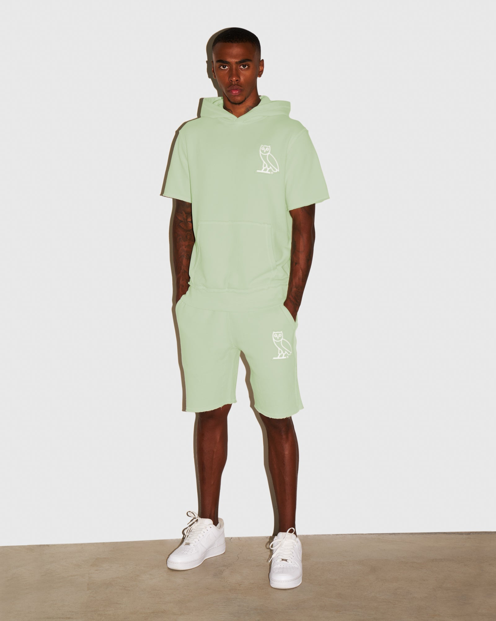 RAW EDGE FRENCH TERRY SWEATSHORT - MINT IMAGE #2