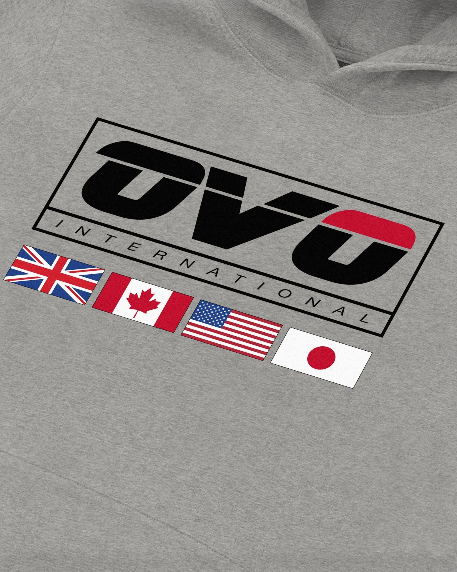 INTERNATIONAL HOODIE - HEATHER GREY IMAGE #3