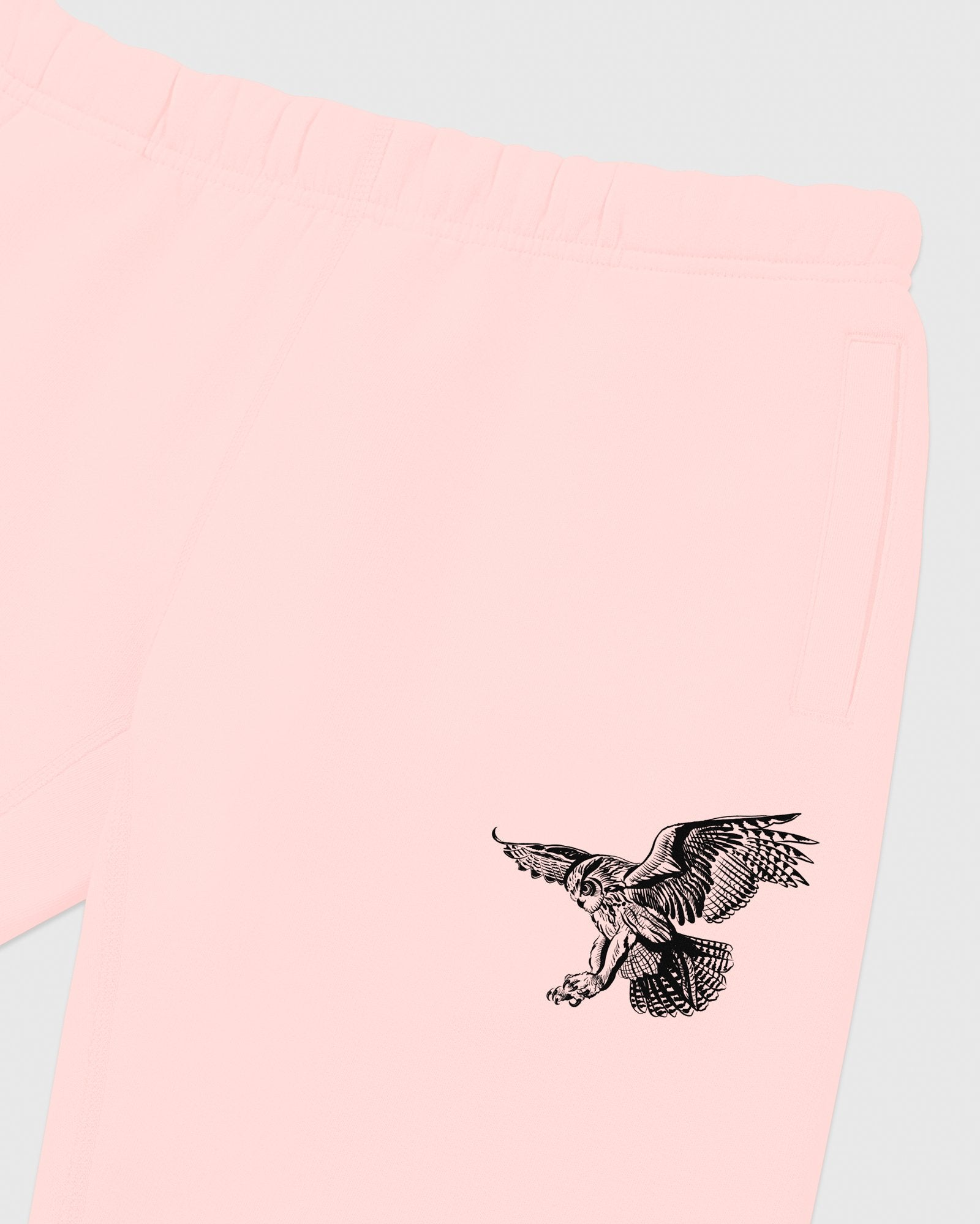 BIRD OF PREY SWEATPANT - PINK IMAGE #3