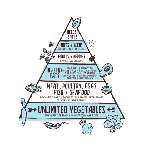 Paleo Diet Food Pyramid Balance Healthy - Purely Natural