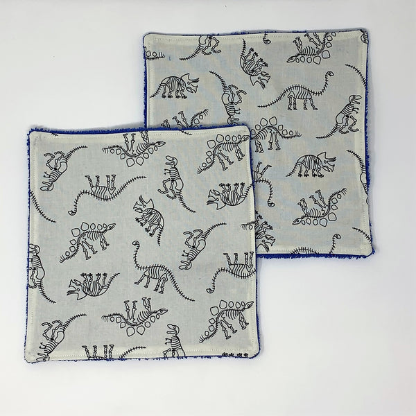 Fossil Friends Dinosaur Washcloth Set of 2