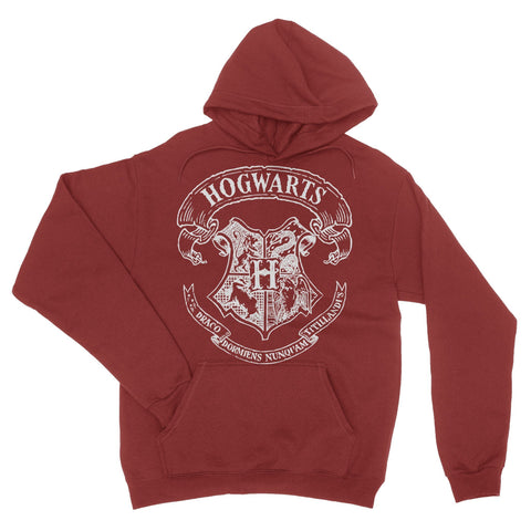 School Of Magic Hoodie-Shirtasaurus