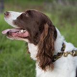 Small Narrow Dog Collar: Camo