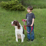 6 Foot Dog Leash: Parker