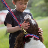 6 Foot Dog Leash: Stars and Stripes