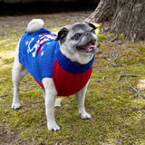 NASA Dog Sweater