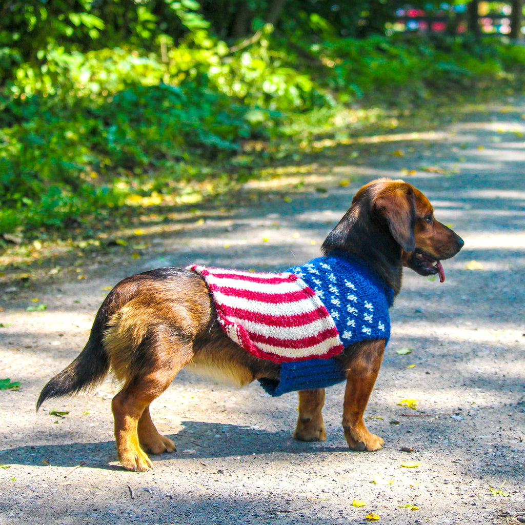 U.S. Flag Dog Sweater