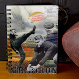 Presidents Ford and Eisenhower 3D Football Collage Bundle
