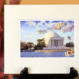 Jefferson Memorial Cherry Blossom Matted Print