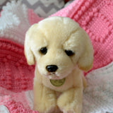 Golden Lab 10-inch Pup