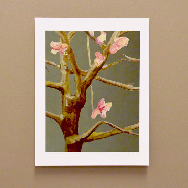 Print: Pink Cherry Blossoms on a Tree