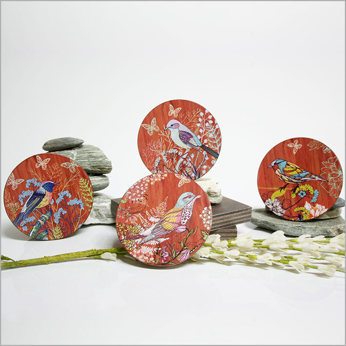 Coasters : Birds - Kiwi Collections