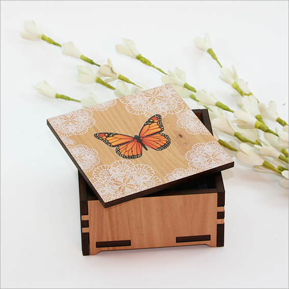 Small Trinket Box : Monarch - Kiwi Collections