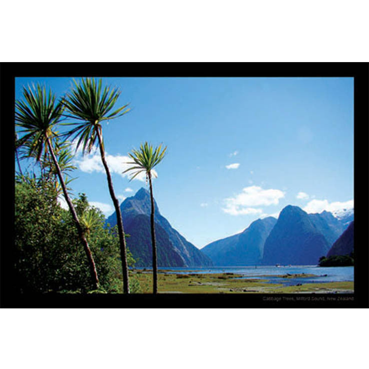 Unique/Thick postcard : Scenic - Milford Sound - Kiwi Collections