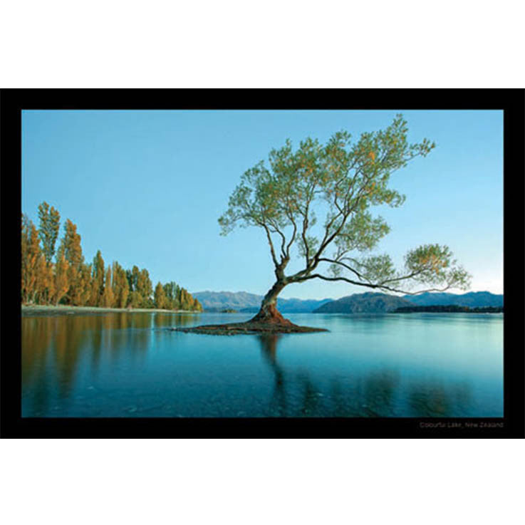Unique/Thick postcard : Scenic - Lake Wanaka - Kiwi Collections
