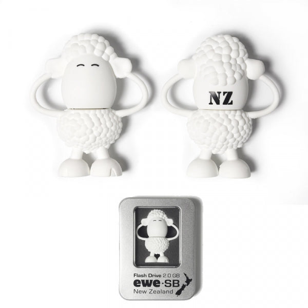 USB FLASH DRIVE - EWE 2GB IN TIN BOX - Kiwi Collections