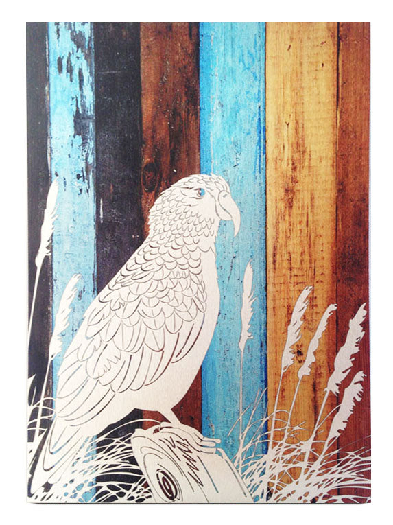 ACM Rectangle Art : Aged Timber Kea - Kiwi Collections