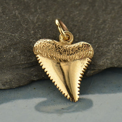 Small Natural Bronze Shark Tooth - Poppies Beads n' More