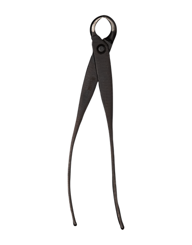Morihei Kikuyu Kobukiri Pruning Shears Small