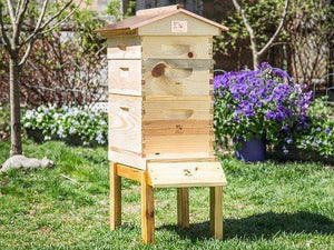Backyard Beekeeper Starter Kit