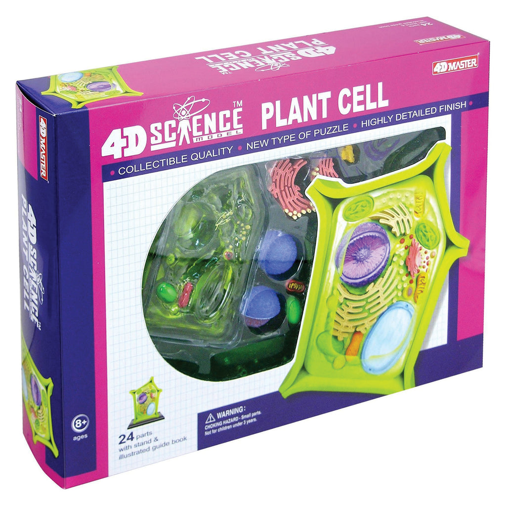 Give Your Kids an Edge in School (Gr 5-8) - 4D Science Plant Cell Model Educational Products - Science & Engineering Toy