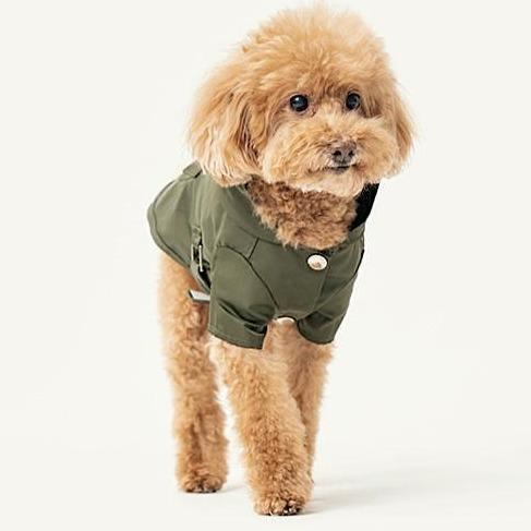 Pehom Raincoat Green - Sir Dogwood