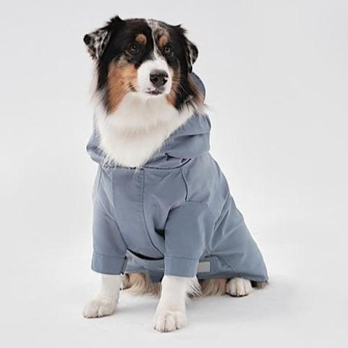Pehom x Yougun Lee Raincoat Blue - Sir Dogwood