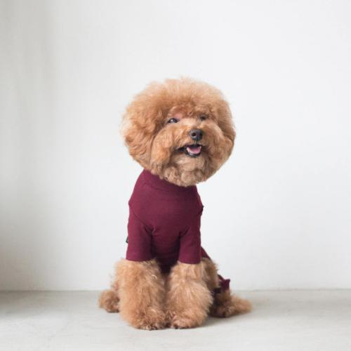 Body Warm All-In-One Burgundy - Sir Dogwood