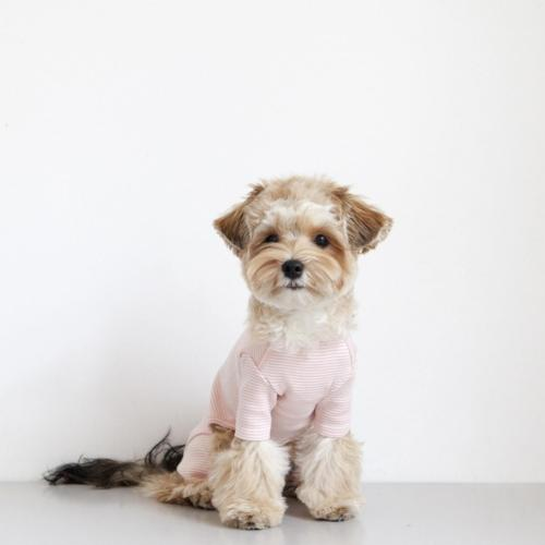 Striped Baby Onesie Pink - Sir Dogwood
