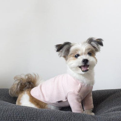 Striped Baby T-Shirt Pink - Sir Dogwood