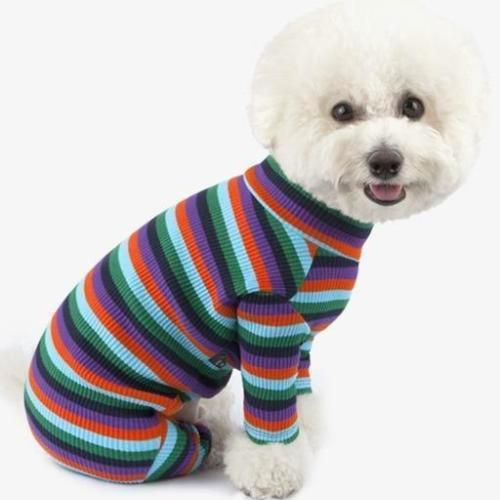 Rainbow Striped Purple Onesie - Sir Dogwood