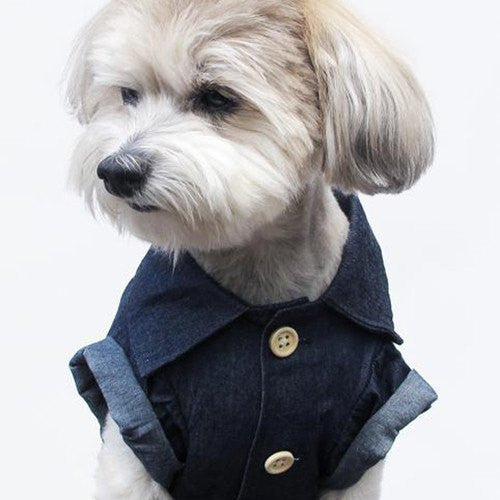 Canadian Tuxedo Shirt - Sir Dogwood