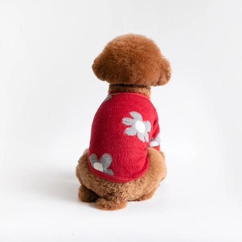 Daisy Cardigan Red - Sir Dogwood