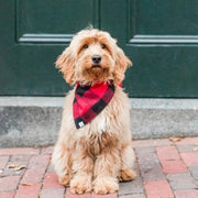 Red And Black Check Flannel Bandana - Sir Dogwood