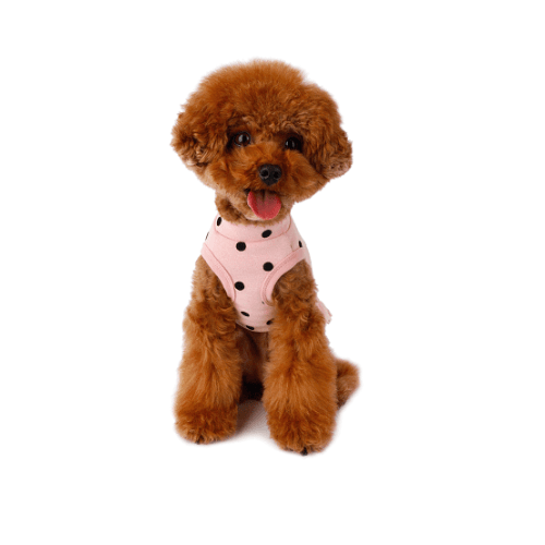 Flocking Dot Dress Pink - Sir Dogwood