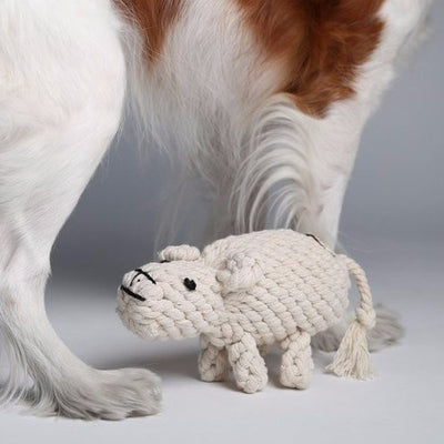 Dolly Sheep Rope Toy - Sir Dogwood