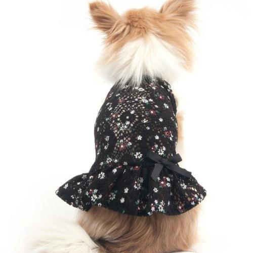 Floral Mini Dress Black - Sir Dogwood