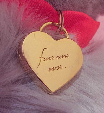 Furr Ever Ever Locket Collar Charm - Sir Dogwood