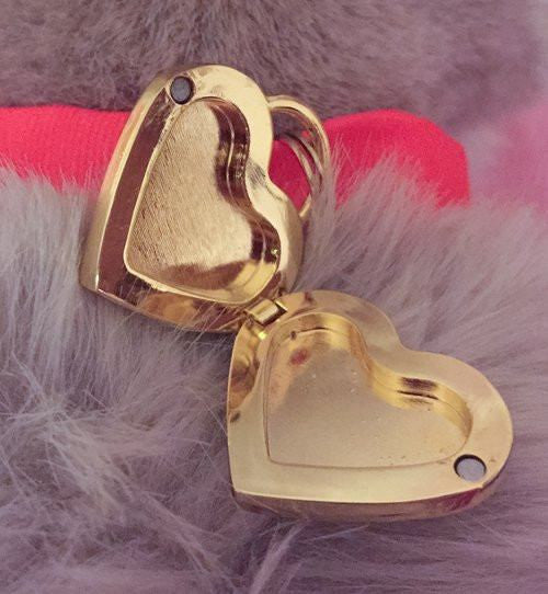 Furr Ever Ever Locket Collar Charm