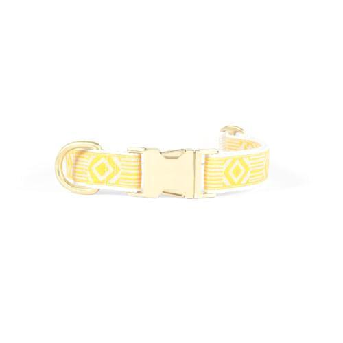 Out Of The Box Collar Marigold & Cream - Sir Dogwood