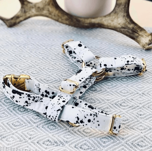 Dalmatian Strap Harness - Sir Dogwood