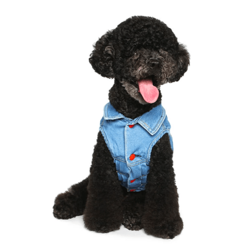 Denim Vest - Sir Dogwood