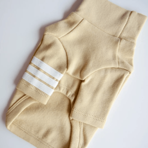 Stripe Point Turtleneck Olive - Sir Dogwood