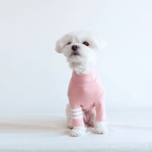 Stripe Point Turtleneck Pink