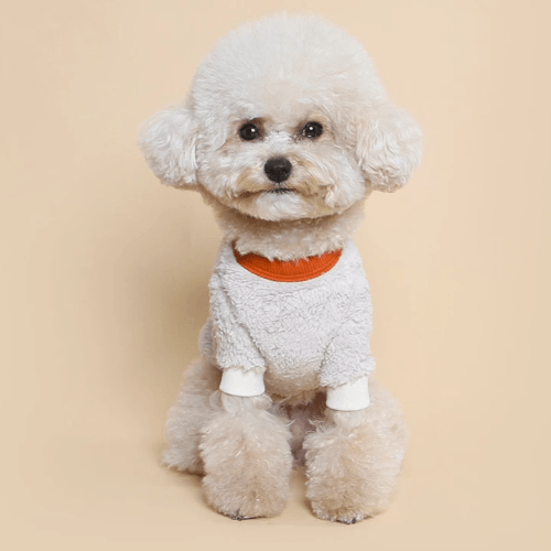 Teddy Fleece Sweater Ivory - Sir Dogwood