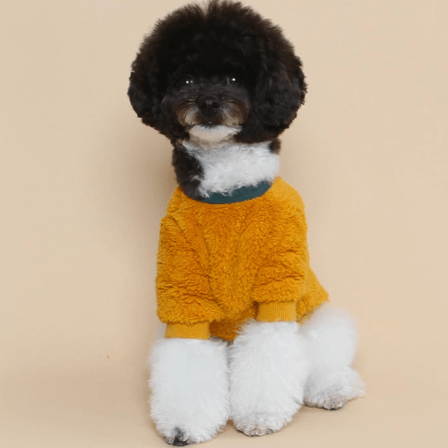 Teddy Fleece Sweater Yellow